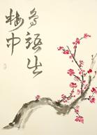 Sakura Les Cerisiers En Fleurs Espace Aquitain Zen Shiatsu Le